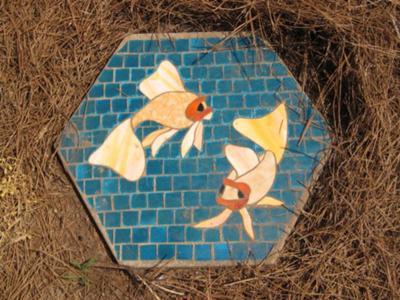 Pond Koi-- the water background lacks the movement of Dragonfly